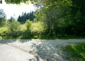 Abzweigung zur Forststraße rechts